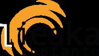 Mediatoimisto Lieska-Tuotanto Oy